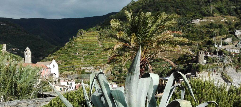 vineyards cinque terre visit