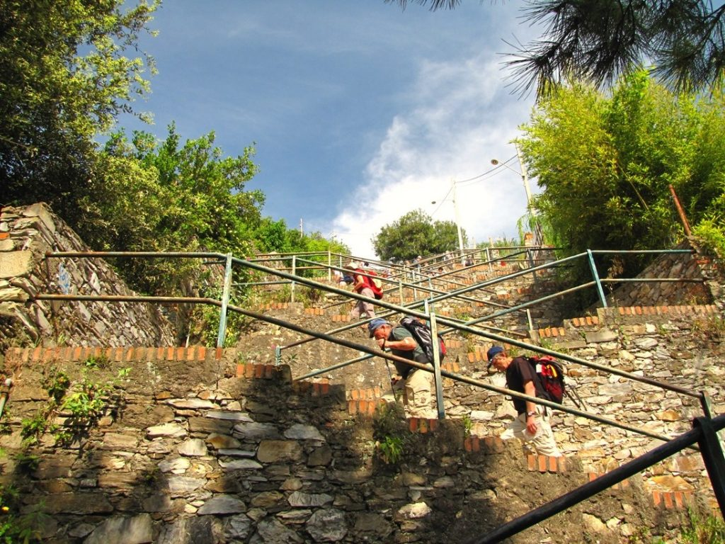 Corniglia steps