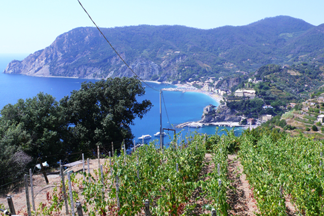 Discover Bonassola on your travel to Italy