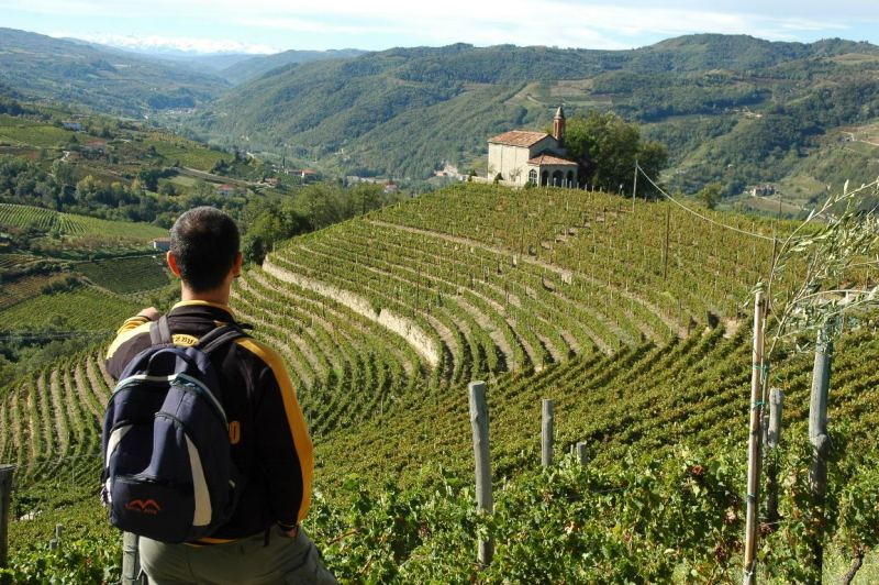 Hiking in Piedmont rolling hills