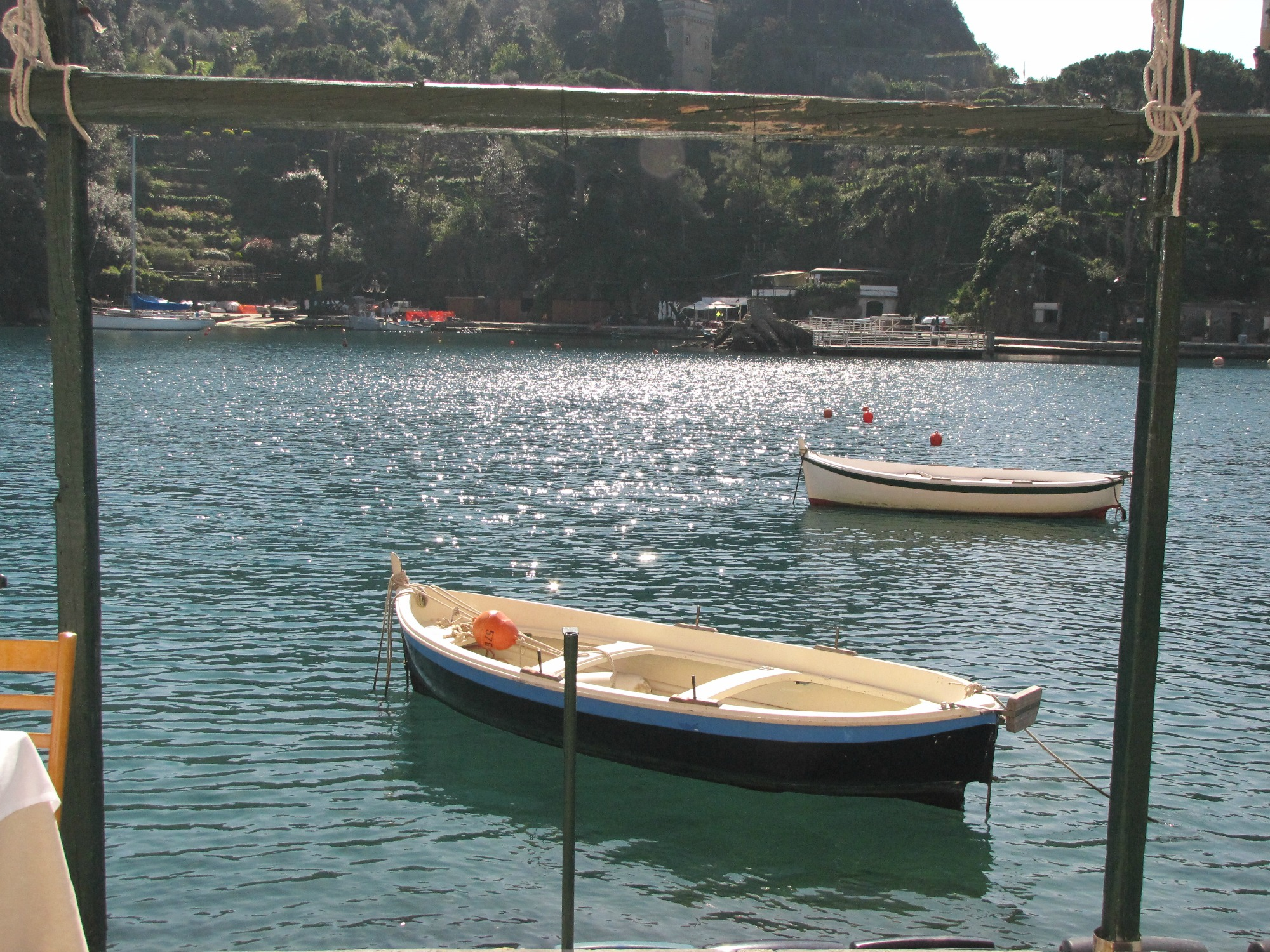 Traditional boats in Portofino