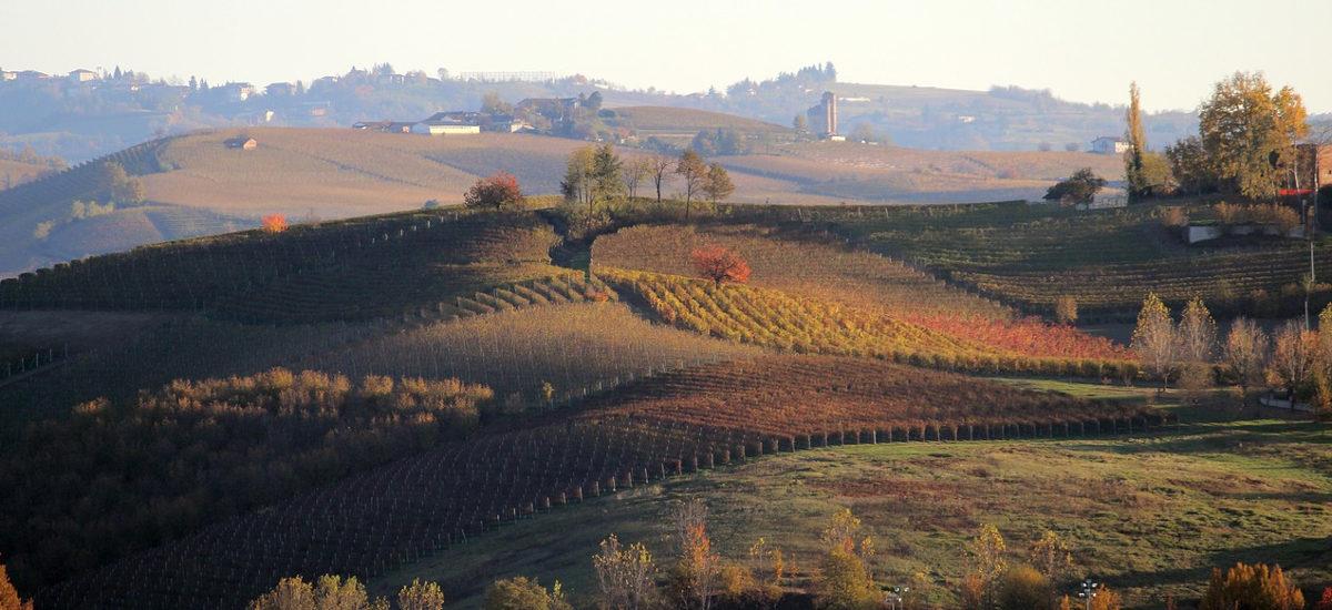 Top Foodie Destinations in Italy: Piedmont meets Liguria