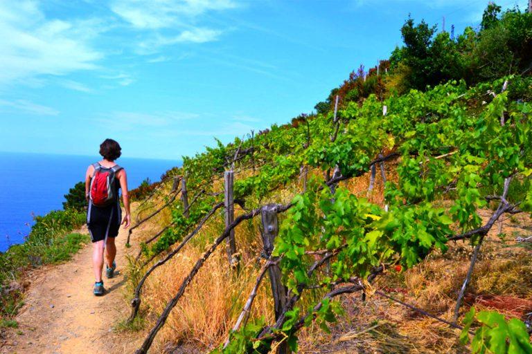 cinque terre hiking tour