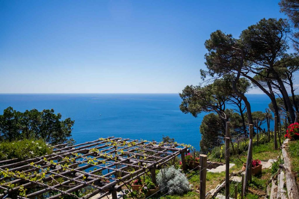 Sustainable Crops in Portofino