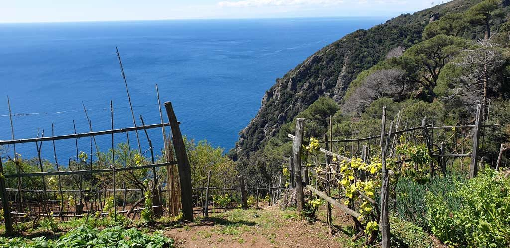 Portofino Hiking Trails