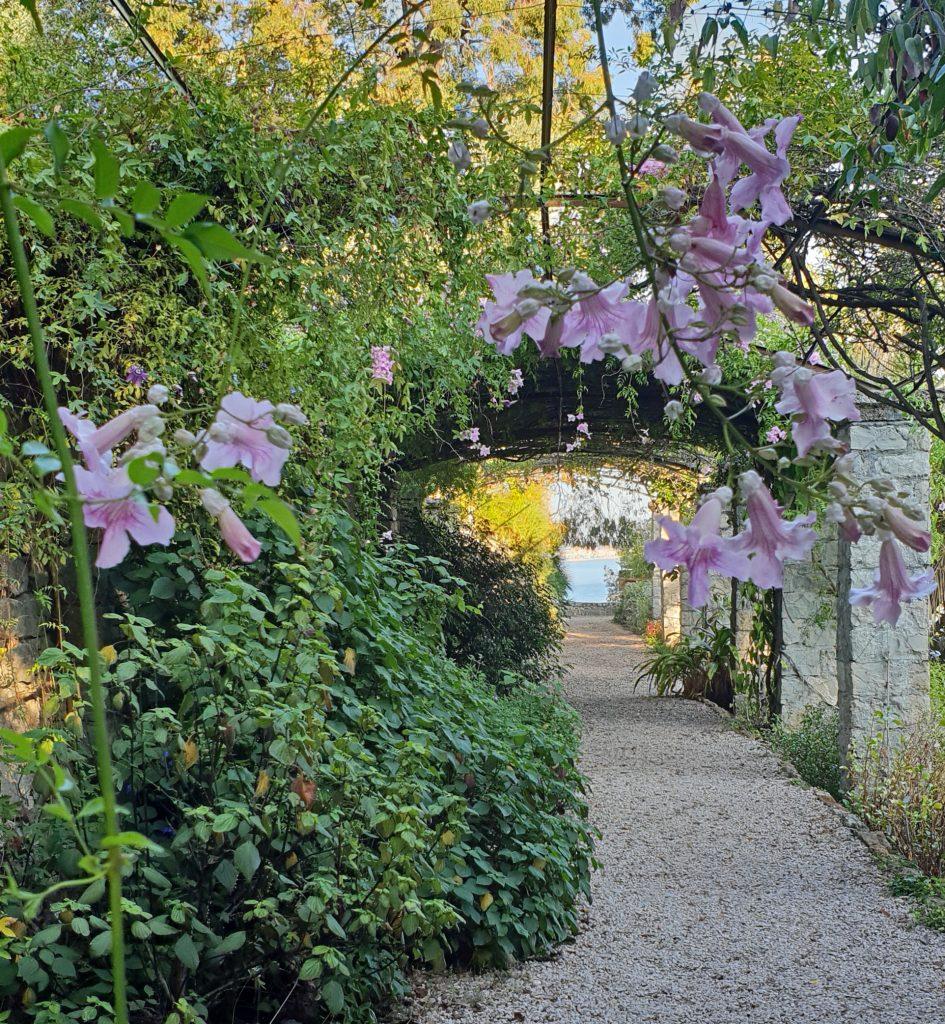 Hanbury Gardens Liguria