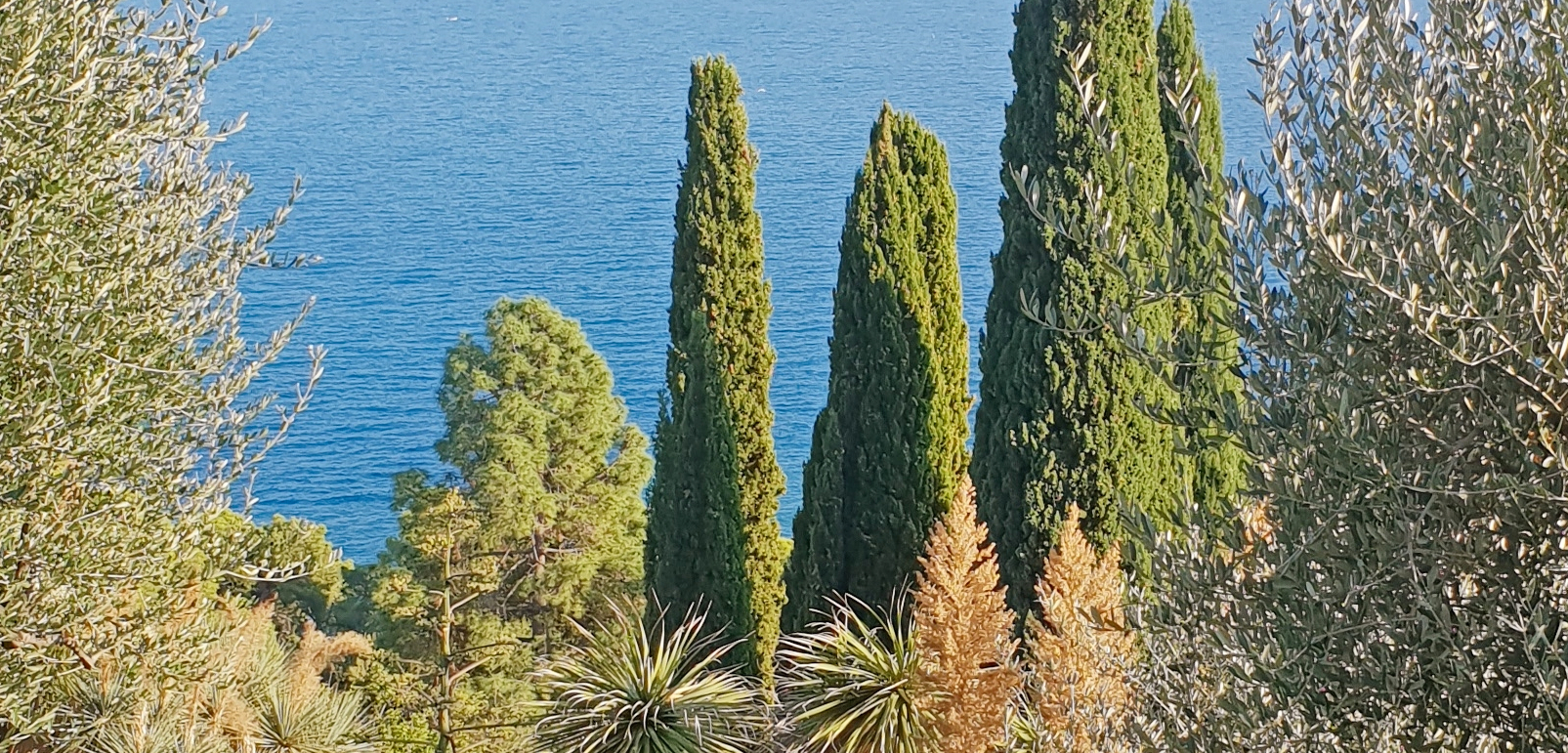 6 Best Gardens to visit and love in Liguria
